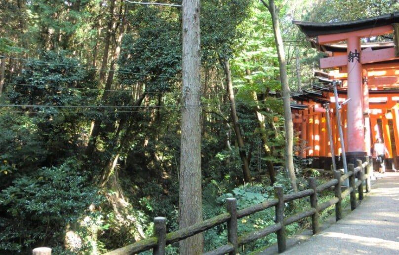 京都・伏見稲荷大社のパワースポット【その7】「川が流れるスポット」