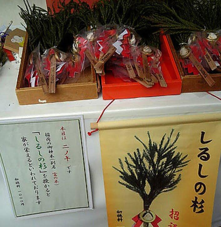 伏見稲荷大社・しるしの杉