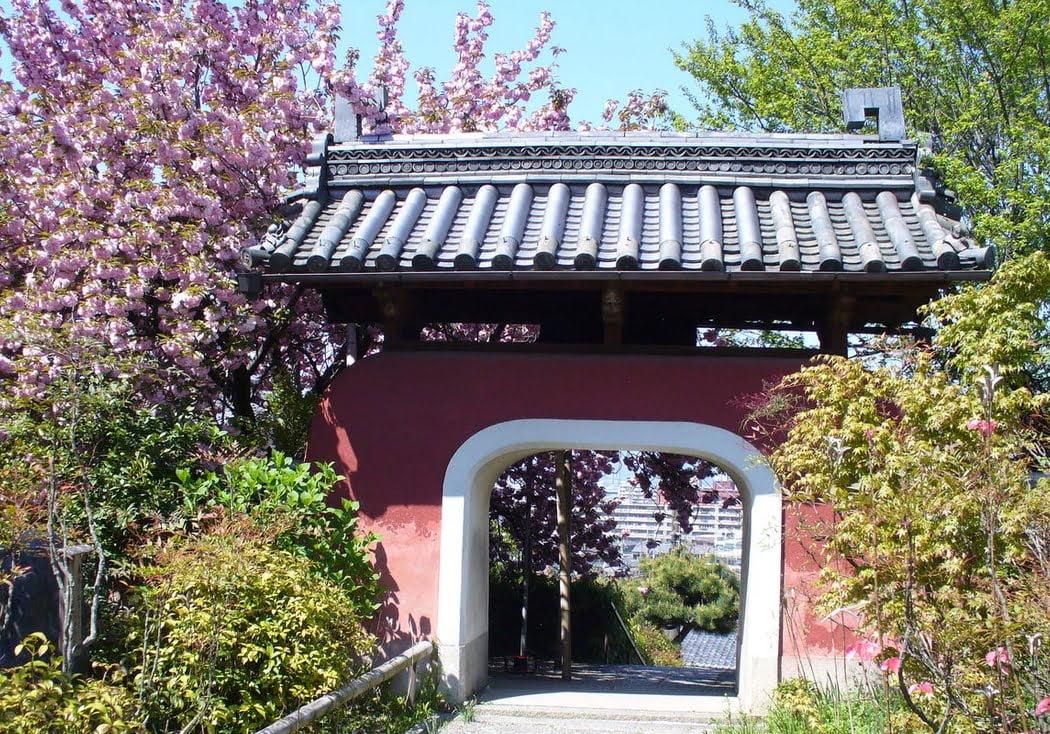 石峰寺の桜