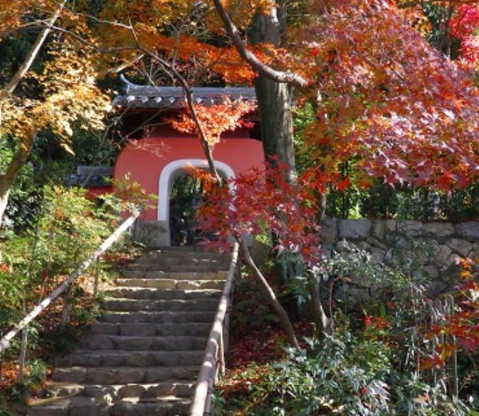 石峰寺の紅葉